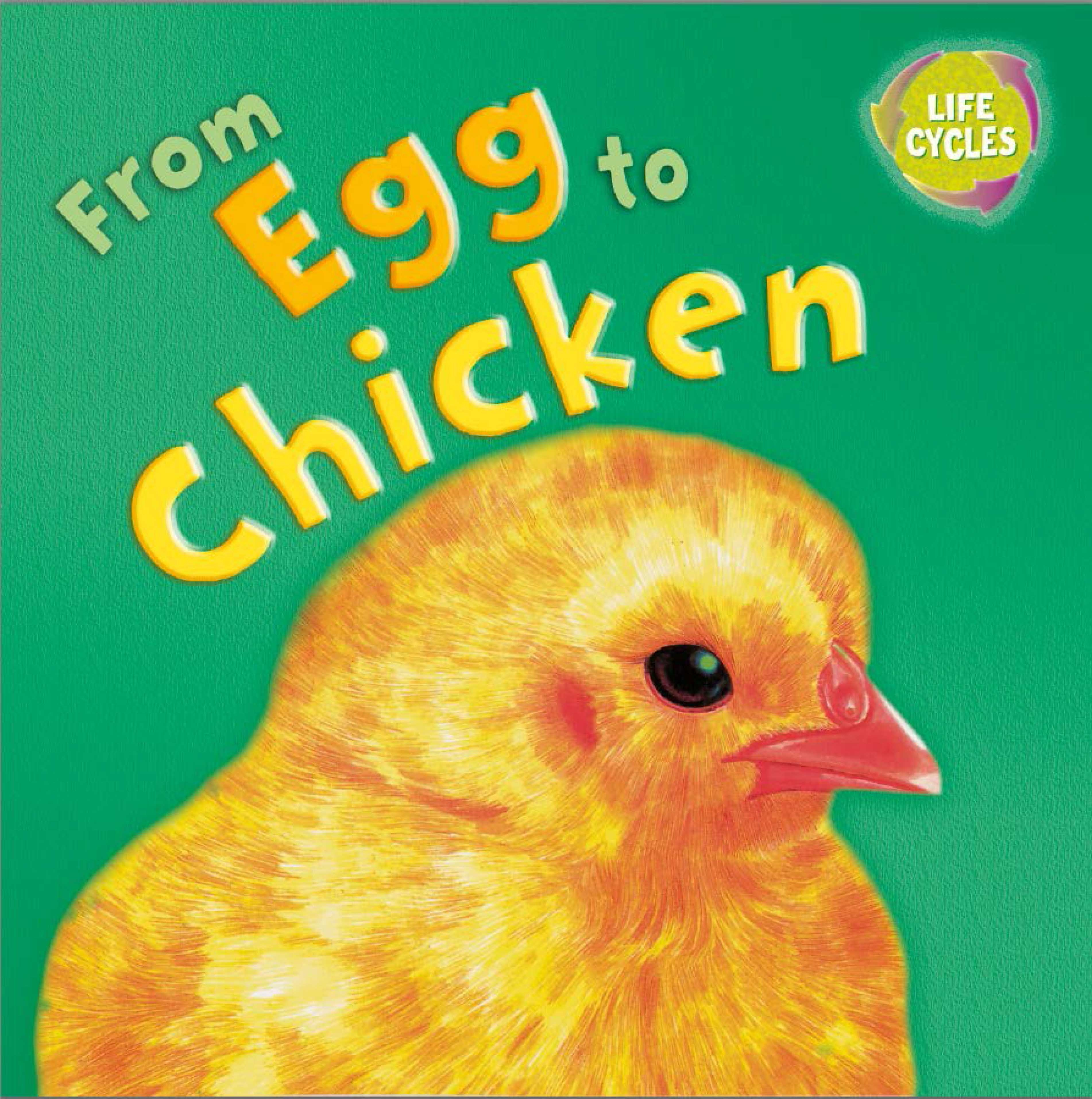 Lifecycles: From Egg To Chicken by Gerald Legg   Hachette Childrens UK